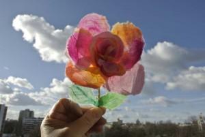 Das erste zarte Gewächs des Jahres. Da freut man sich schon auf den Frühling.