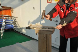 Der Stockfisch wird mit einem Hammer mürbe geschlagen.