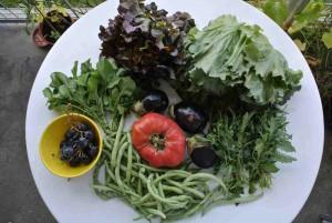 Da haben wir den Salat. Auch zu sehen: Bohnen, die drei kleinen Auberginen und eine große Fleischtomate. Ein paar Weintrauben sind auch dabei.
