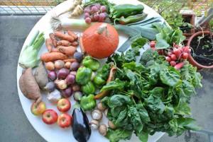 Herbsteinkauf mit viel frischem Gemüse. Die milden Temperaturen machen es möglich.
