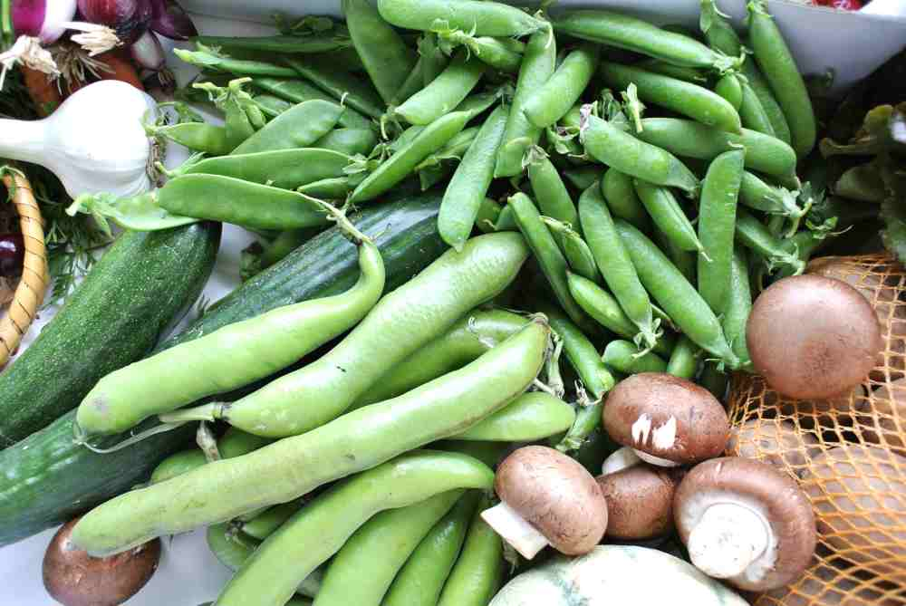 Bohnen, Zuckererbsen und Markerbsen.