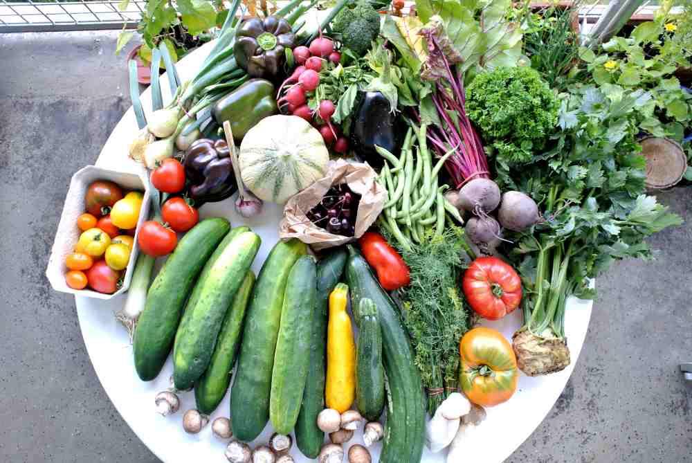 Vom Obst allein wird man nicht satt. Daher machen wir auch in Gemüse.