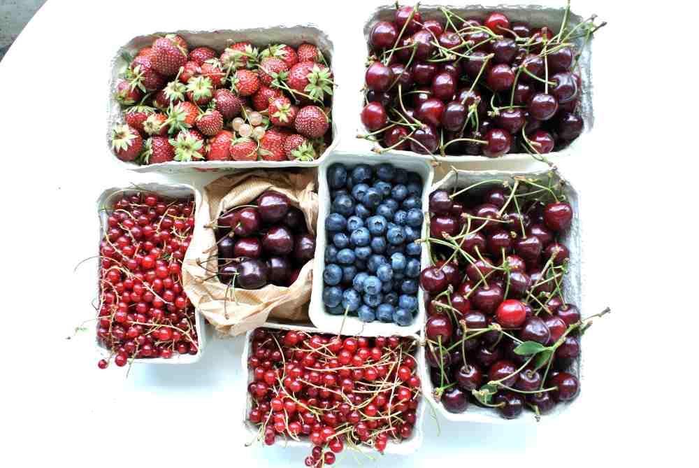 Hier unser Obsteinkauf von Wochenende, das Obstjahr in seiner ganzen Pracht.