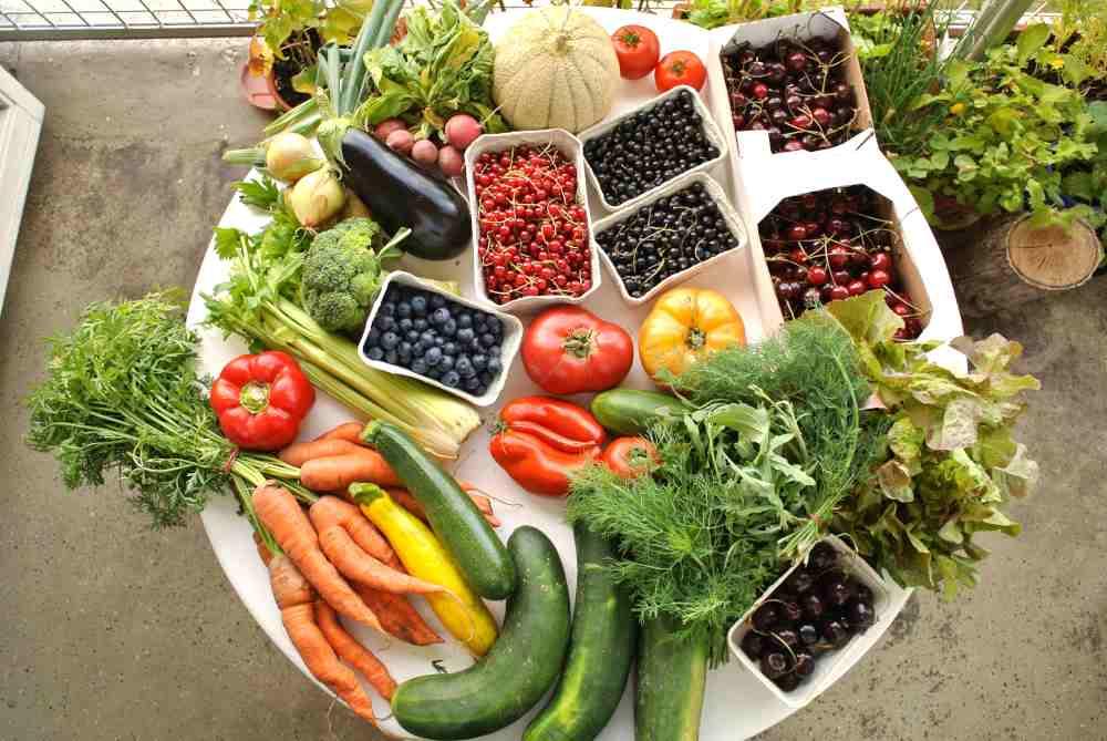 Beeren, Tomaten, Schmorgurken, Melone und was der Sommer sonst zu bieten hat