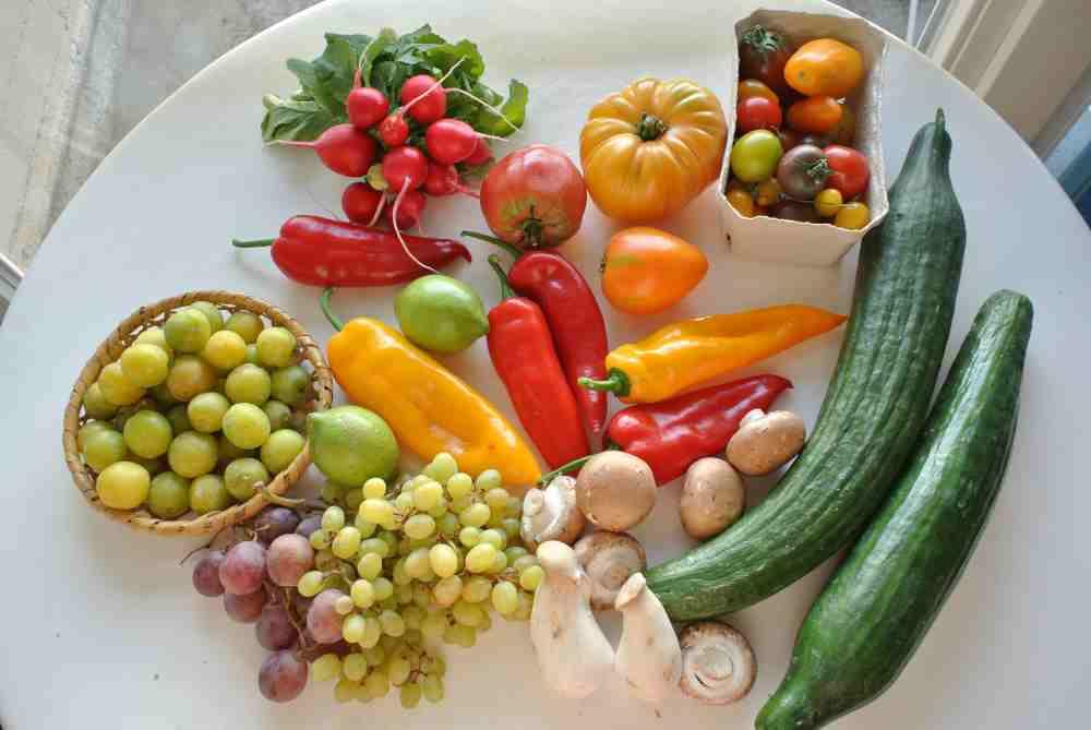 Grünes, rotes, gelbes und orangenes Gemüse und Pilze