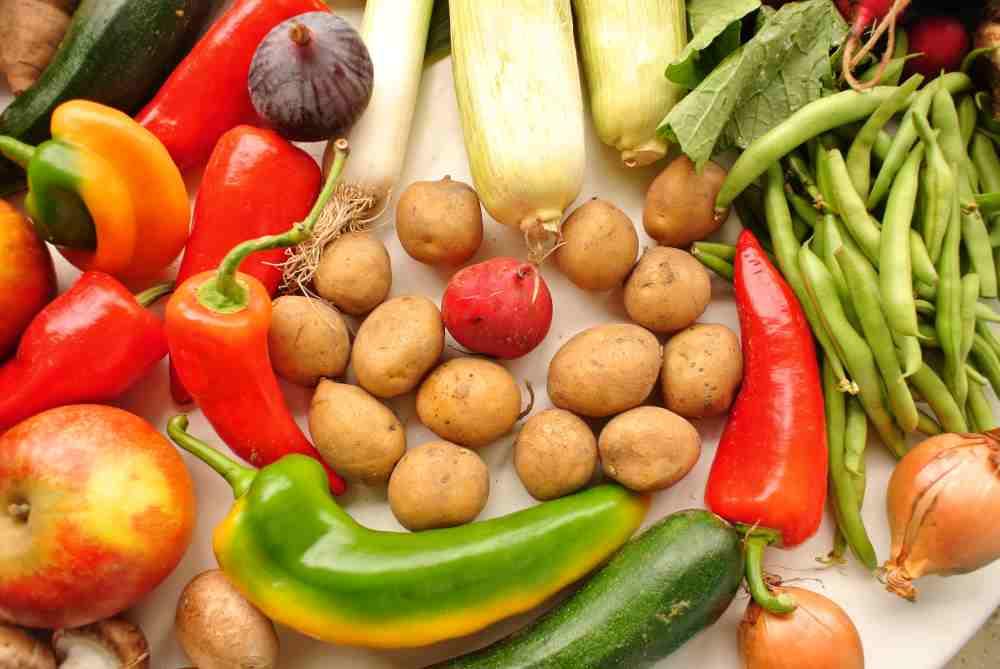 Der verzweifelte Versuch des Radieschens, sich zwischen Kartoffeln zu verstecken